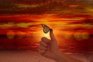 Like Thumb Butterfly Ease Wellness